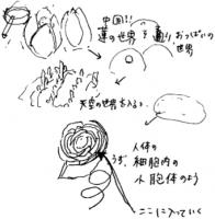 Kagayaki5