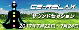 """""""CE-RELAX"""""""